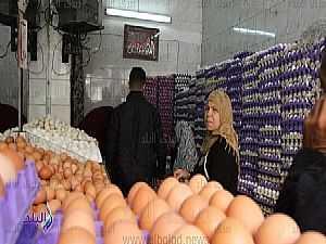 ارتفاع أسعار البيض.. والتجار: «هيفقس من الركنة» ..فيديو وصور